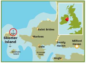 Skomer_Island_Devon_map1